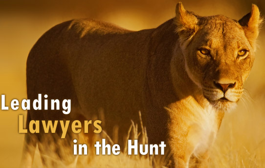 Leading Texas lawyers in the hunt.