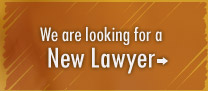 We are looking for a new lawyer.